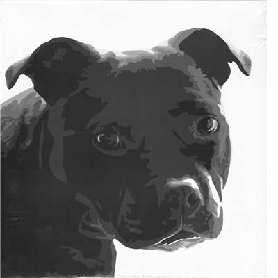 Affiche Staffordshire Bull